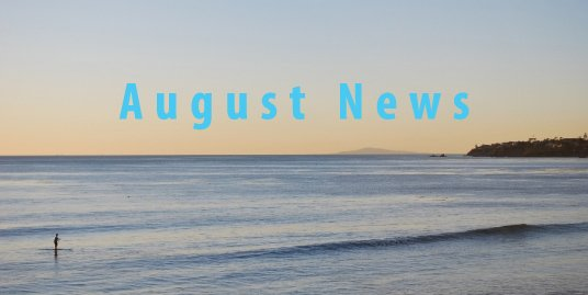 Real Estate Newsletter August